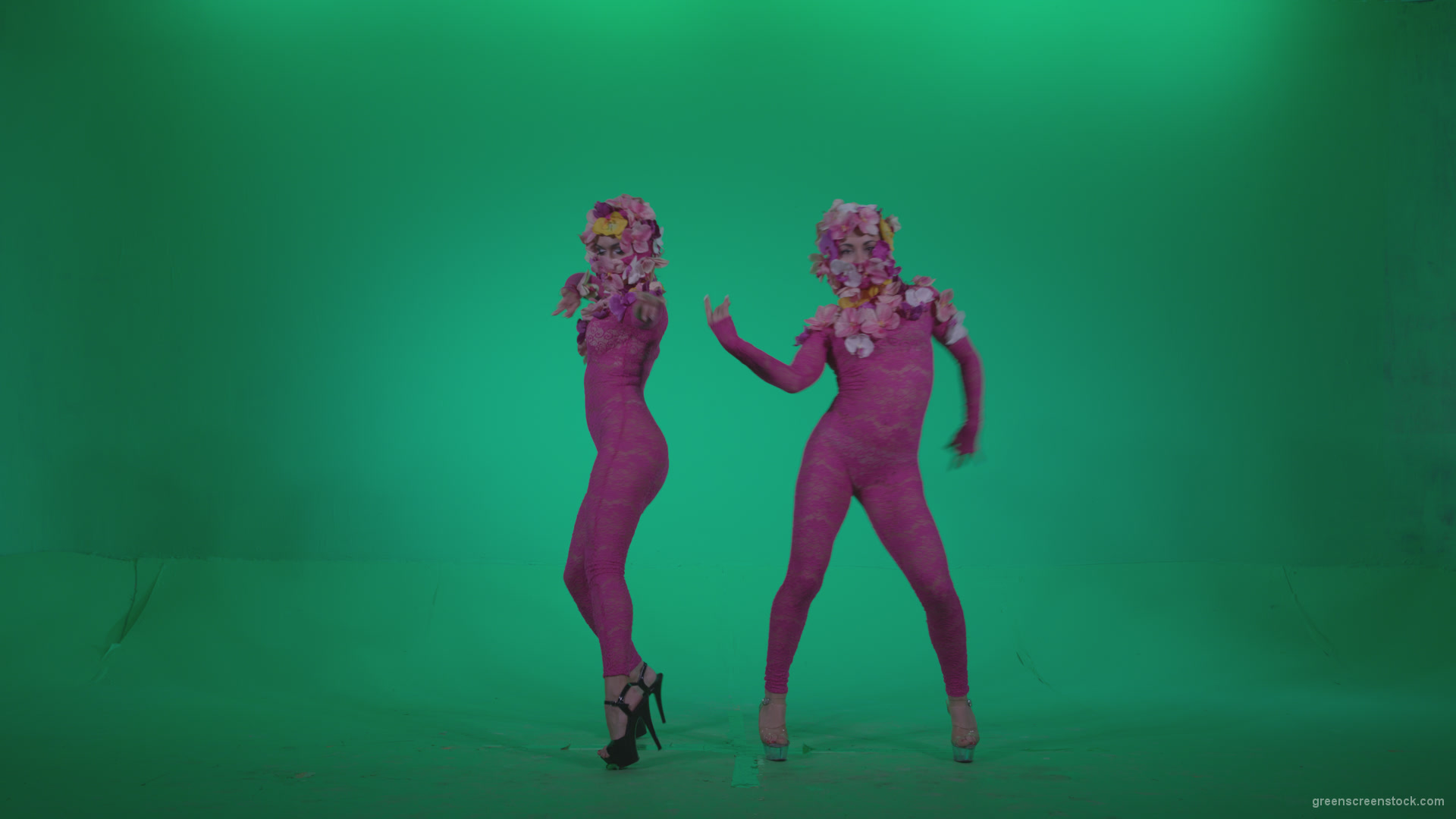 Go go dancer pink flowers f1 green screen video footage video go go dancer pink flowers f1 green screen mightylinksfo