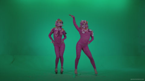 vj video background Go-go-Dancer-Pink-flowers-f1-Green-Screen-Video-Footage_003