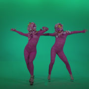 Go-go-Dancer-Pink-flowers-f2-Green-Screen-Video-Footage_004 Green Screen Stock