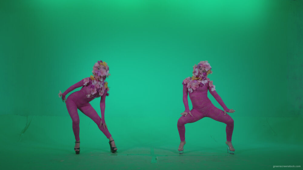 vj video background Go-go-Dancer-Pink-flowers-f3-Green-Screen-Video-Footage_003