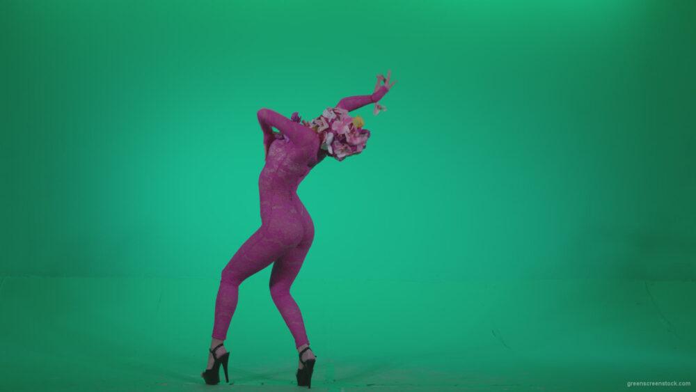 vj video background Go-go-Dancer-Pink-flowers-f7-Green-Screen-Video-Footage_003