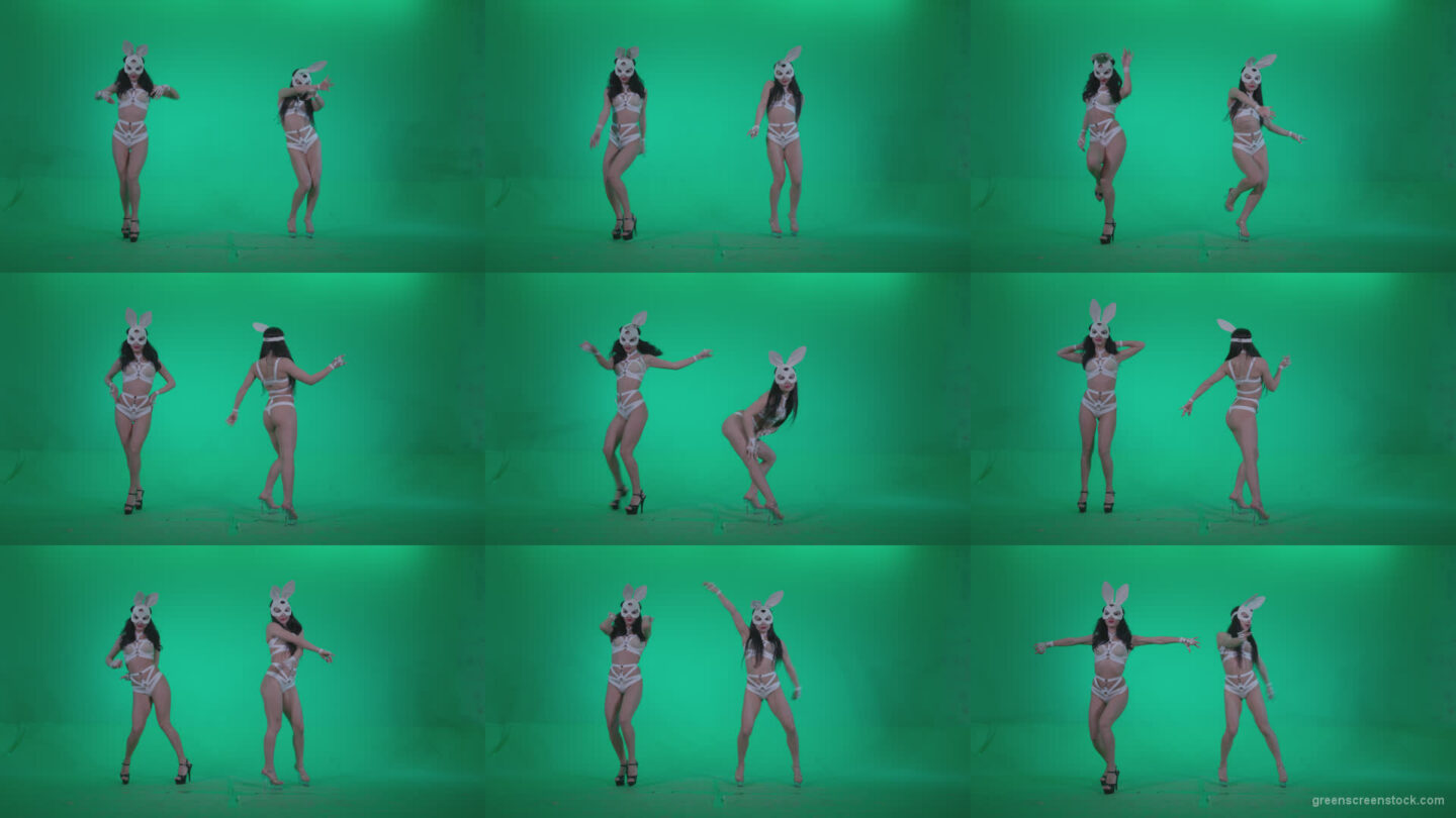 Go-go-Dancer-White-Rabbit-m1-Green-Screen-Video-Footage Green Screen Stock