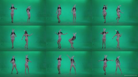 Go-go-Dancer-White-Rabbit-m1-Green-Screen-Video-Footage Green Screen Stock