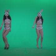 Go-go-Dancer-White-Rabbit-m1-Green-Screen-Video-Footage_002 Green Screen Stock