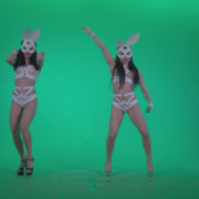 Go-go-Dancer-White-Rabbit-m1-Green-Screen-Video-Footage_008 Green Screen Stock