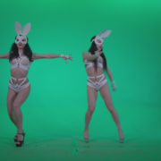 Go-go-Dancer-White-Rabbit-m1-Green-Screen-Video-Footage_009 Green Screen Stock