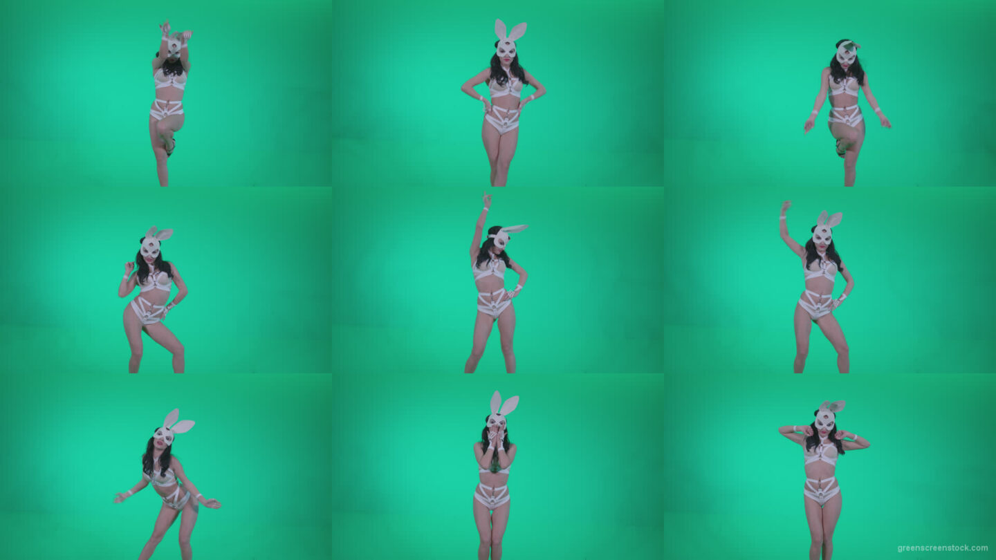 Go-go-Dancer-White-Rabbit-m10-Green-Screen-Video-Footage Green Screen Stock
