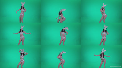 Go-go-Dancer-White-Rabbit-m11-Green-Screen-Video-Footage Green Screen Stock