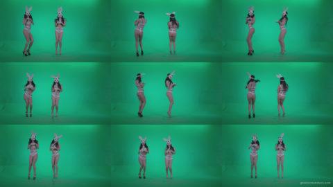 Go-go-Dancer-White-Rabbit-m2-Green-Screen-Video-Footage Green Screen Stock