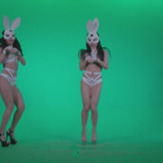 Go-go-Dancer-White-Rabbit-m2-Green-Screen-Video-Footage_001 Green Screen Stock
