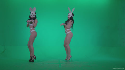 vj video background Go-go-Dancer-White-Rabbit-m2-Green-Screen-Video-Footage_003
