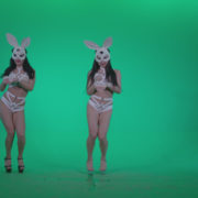 Go-go-Dancer-White-Rabbit-m2-Green-Screen-Video-Footage_004 Green Screen Stock