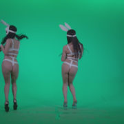 Go-go-Dancer-White-Rabbit-m2-Green-Screen-Video-Footage_006 Green Screen Stock