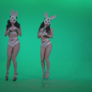 Go-go-Dancer-White-Rabbit-m2-Green-Screen-Video-Footage_007 Green Screen Stock