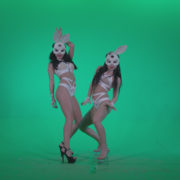 Go-go-Dancer-White-Rabbit-m3-Green-Screen-Video-Footage_007 Green Screen Stock