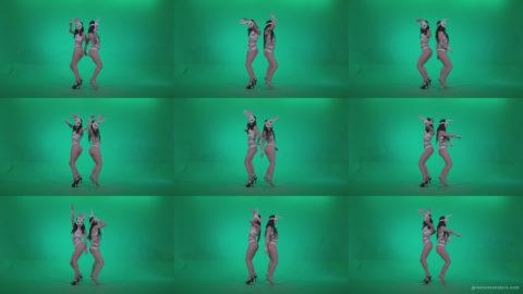 Go-go-Dancer-White-Rabbit-m5-Green-Screen-Video-Footage Green Screen Stock