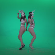 Go-go-Dancer-White-Rabbit-m5-Green-Screen-Video-Footage_001 Green Screen Stock