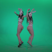 Go-go-Dancer-White-Rabbit-m5-Green-Screen-Video-Footage_004 Green Screen Stock