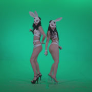 Go-go-Dancer-White-Rabbit-m5-Green-Screen-Video-Footage_005 Green Screen Stock