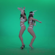 Go-go-Dancer-White-Rabbit-m5-Green-Screen-Video-Footage_009 Green Screen Stock