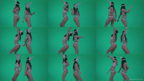 Go-go-Dancer-White-Rabbit-m6-Green-Screen-Video-Footage Green Screen Stock