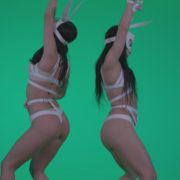 Go-go-Dancer-White-Rabbit-m6-Green-Screen-Video-Footage_006 Green Screen Stock
