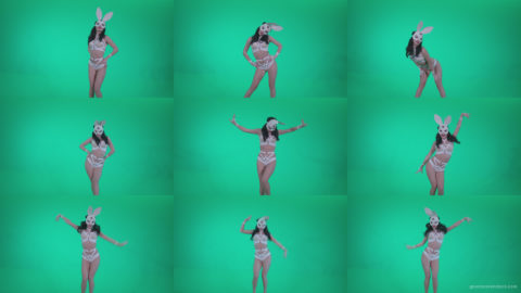 Go-go-Dancer-White-Rabbit-m9-Green-Screen-Video-Footage Green Screen Stock