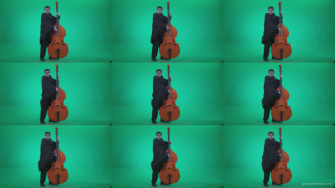 Gothic-Contrabass-Jazz-Performer-2 Green Screen Stock