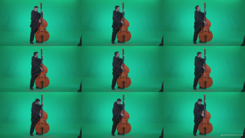 Gotic-Contrabass-Jazz-Performer-1 Green Screen Stock