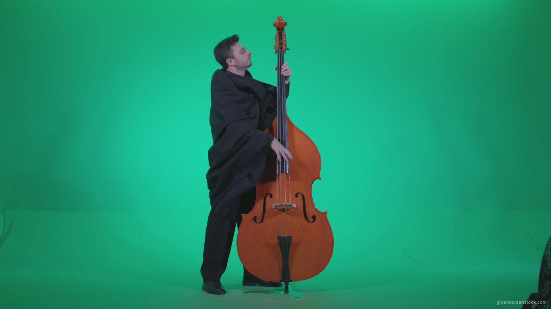 vj video background Gotic-Contrabass-Jazz-Performer-1_003