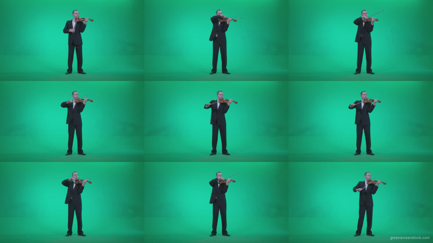 Professional-Violin-player-man-z1 Green Screen Stock