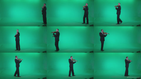 Professional-Violin-player-man-z3 Green Screen Stock
