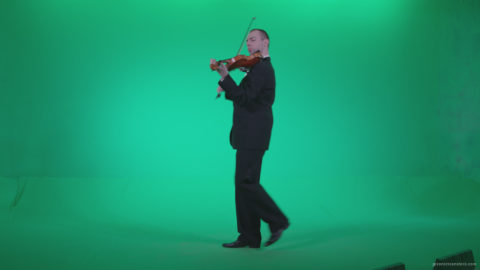 vj video background Professional-Violin-player-man-z3_003