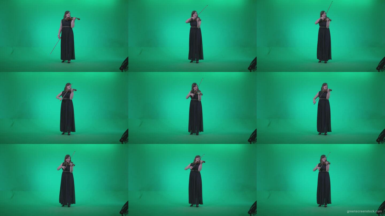 Professional-Violin-player-woman-z1 Green Screen Stock