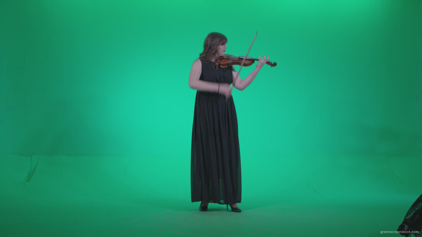 vj video background Professional-Violin-player-woman-z2_003