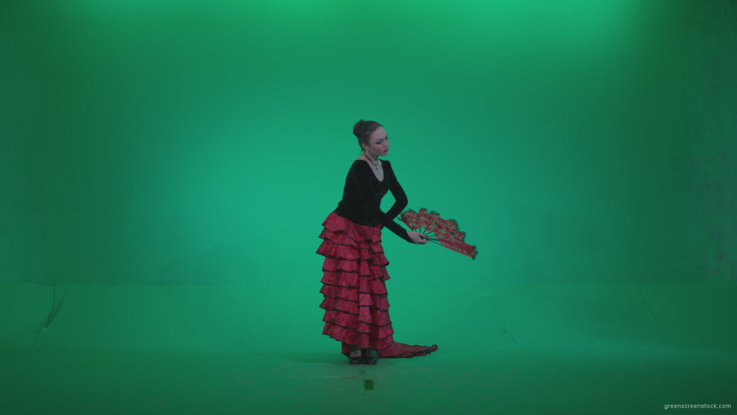 vj video background Traditional-Spanish-Flamenco-dancer-s1_003