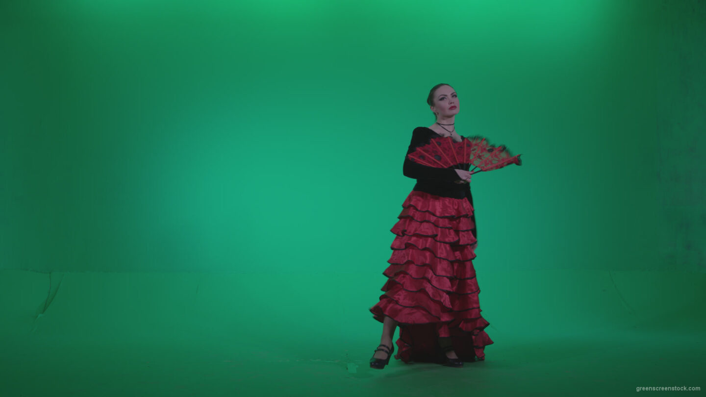 vj video background Traditional-Spanish-Flamenco-dancer-s2_003