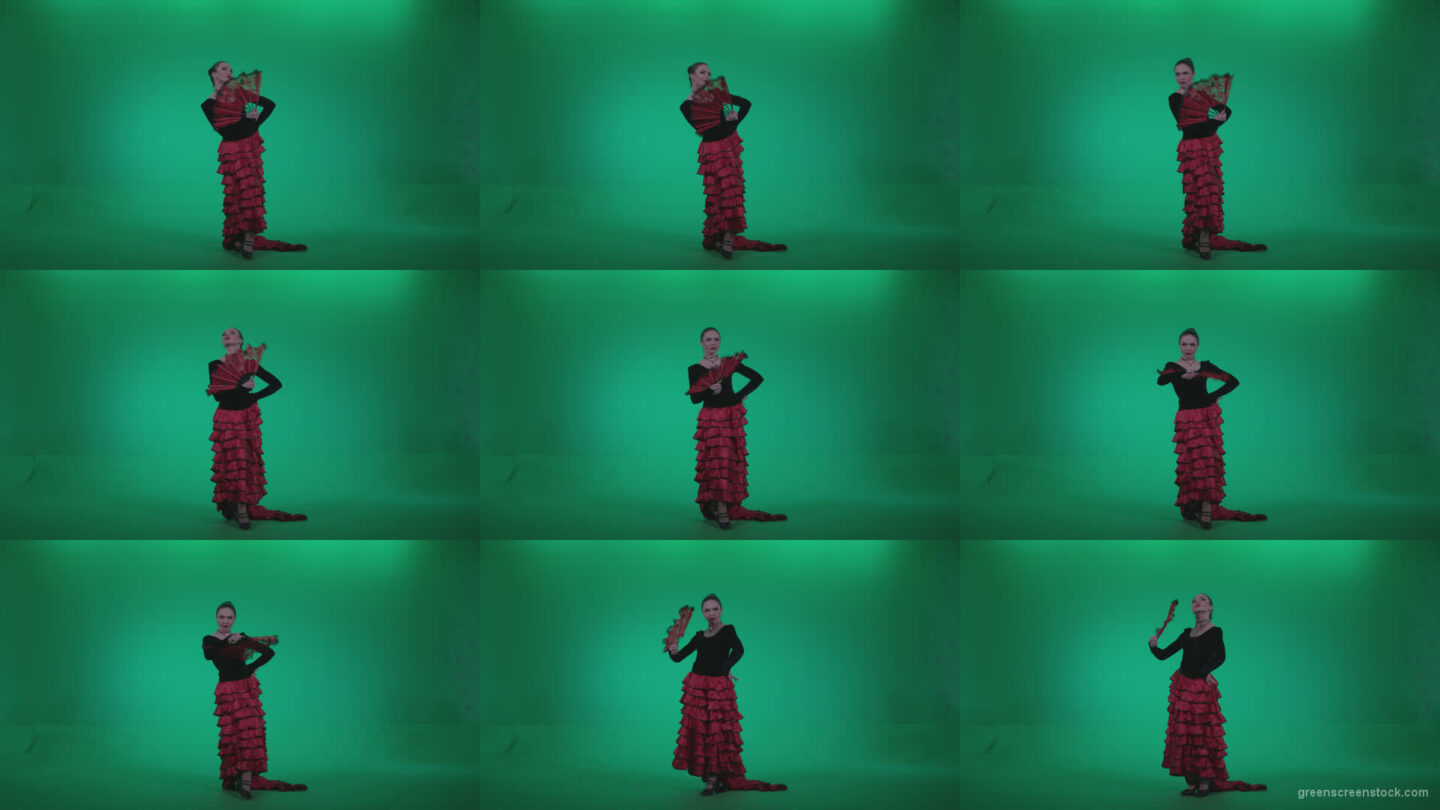 Traditional-Spanish-Flamenco-dancer-s3 Green Screen Stock