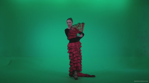 vj video background Traditional-Spanish-Flamenco-dancer-s3_003