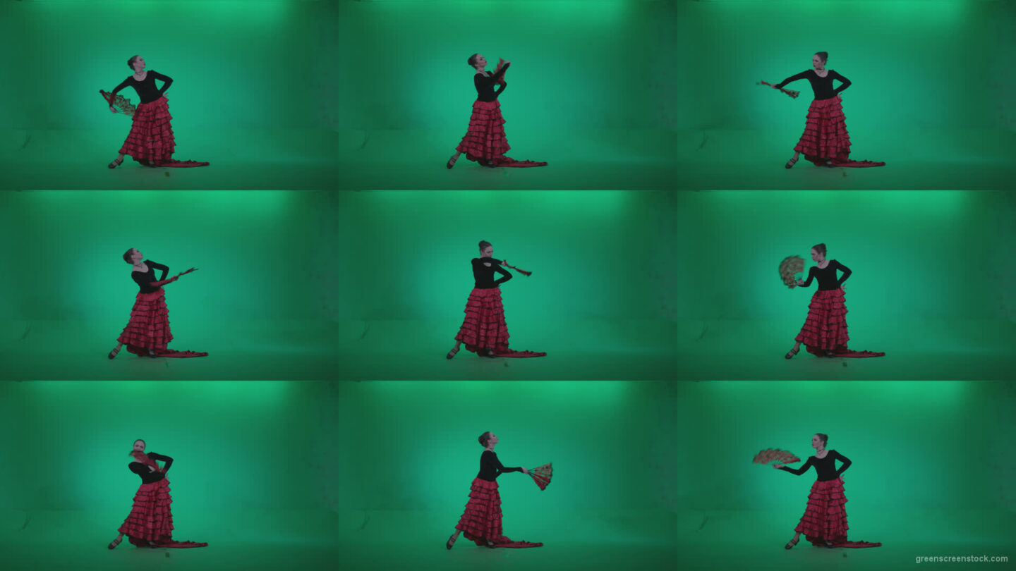 Traditional-Spanish-Flamenco-dancer-s4 Green Screen Stock