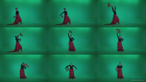Traditional-Spanish-Flamenco-dancer-s5 Green Screen Stock