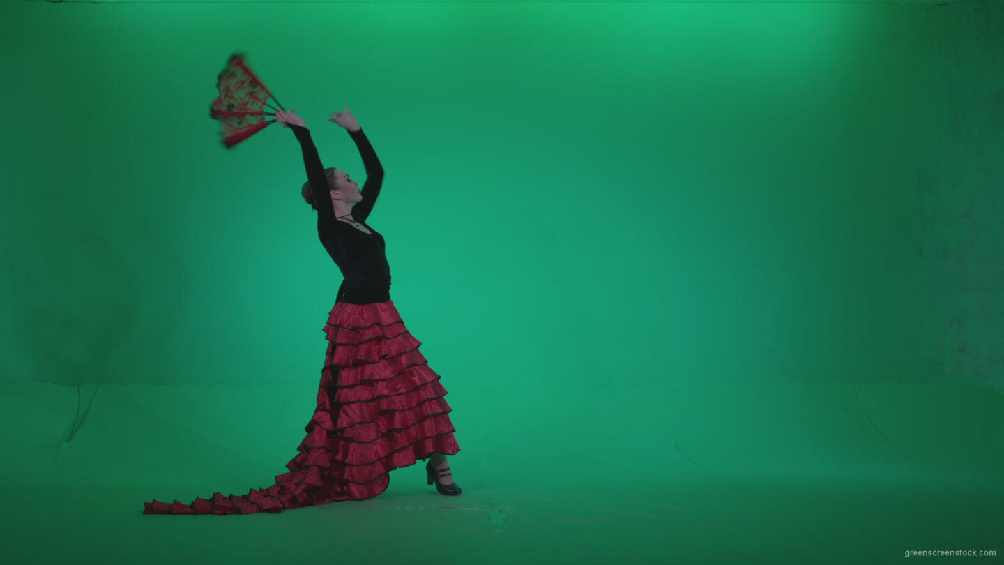 vj video background Traditional-Spanish-Flamenco-dancer-s5_003