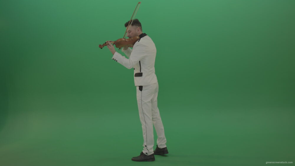 vj video background Full-size-Classic-orchestra-man-in-white-wear-play-violin-strings-music-instrument-isolated-on-green-screen-back-side-view_003