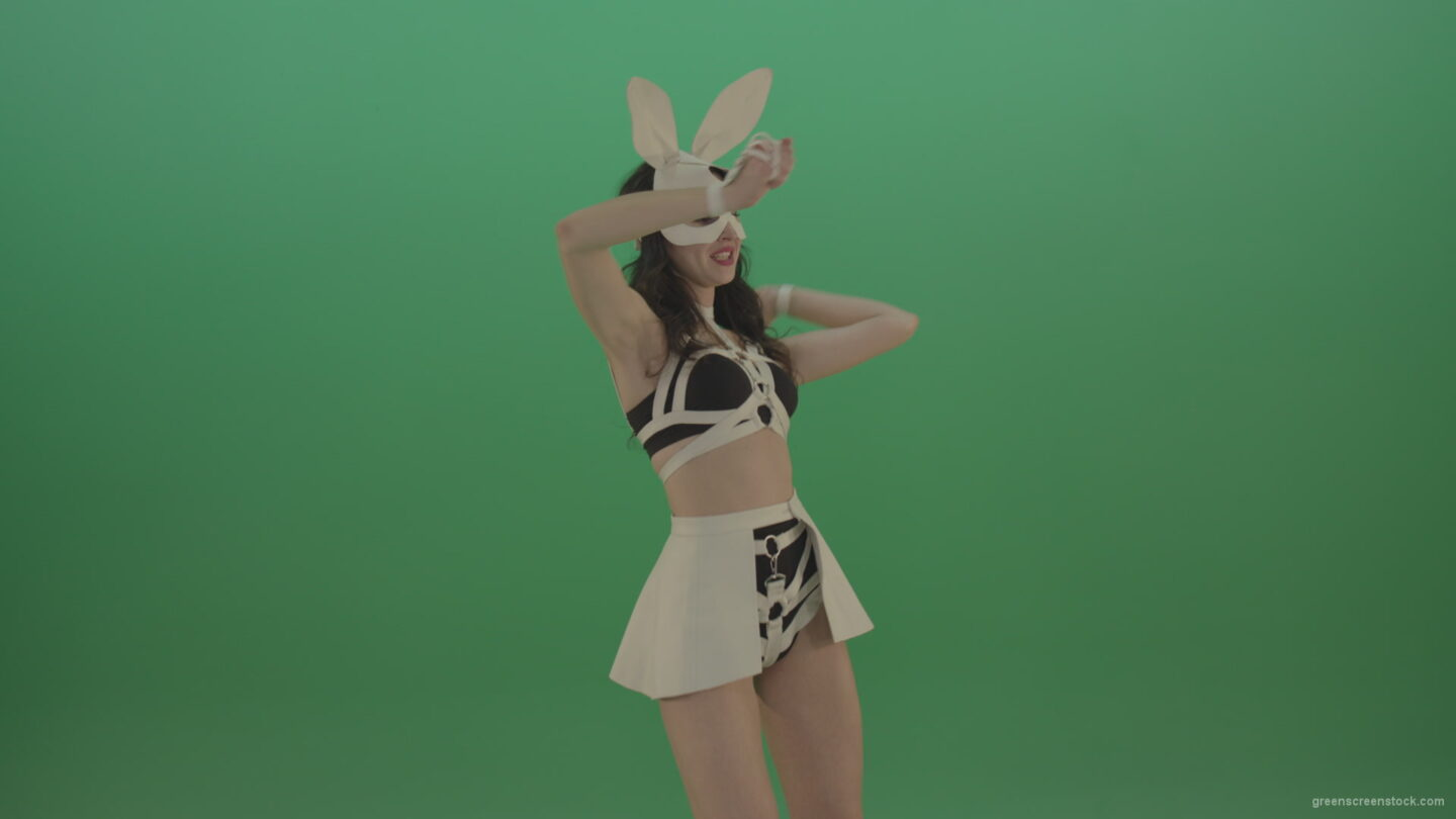 vj video background Beautiful-bunny-in-a-lovely-suit-cyclically-moves-hands-and-dances-on-green-background_003