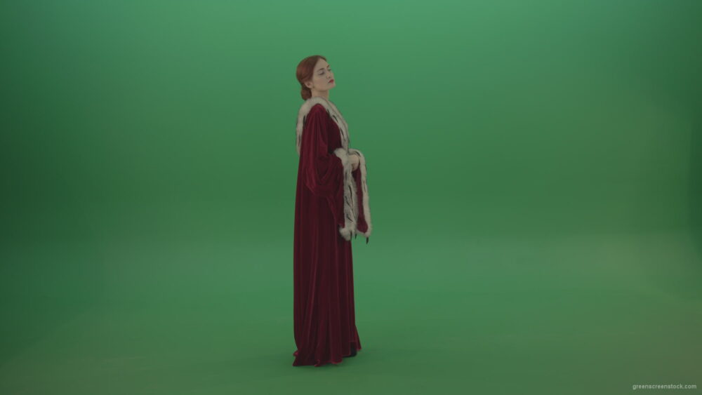 vj video background Elegant-woman-princess-with-light-movements-shows-her-beauty-dressed-in-red-cloak-on-a-green-background_003