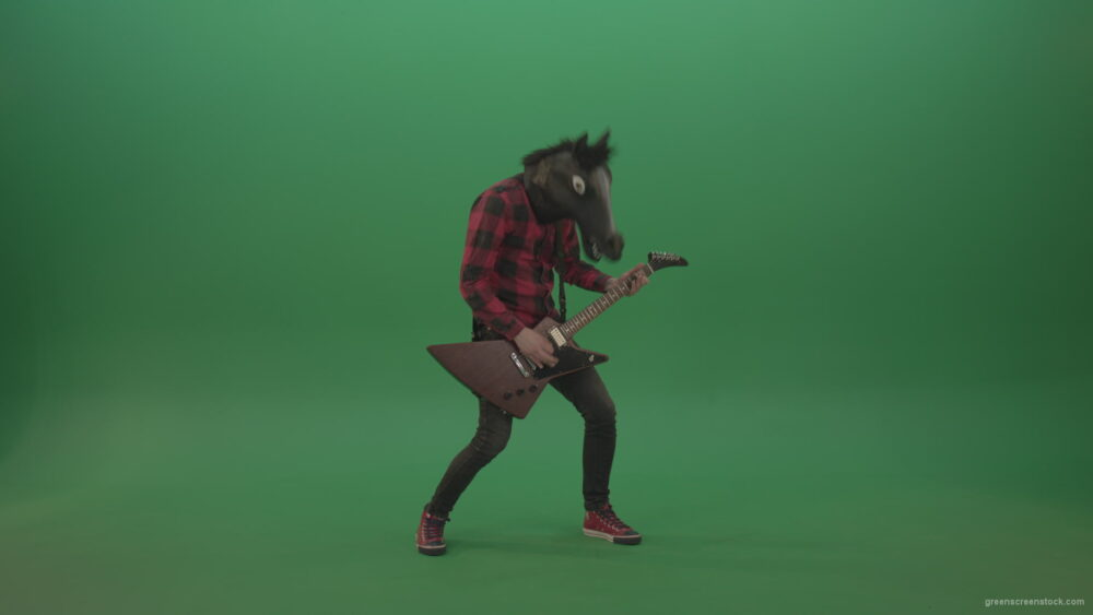 vj video background Fun-green-screen-animal-horse-man-with-guitar-on-green-screen_003
