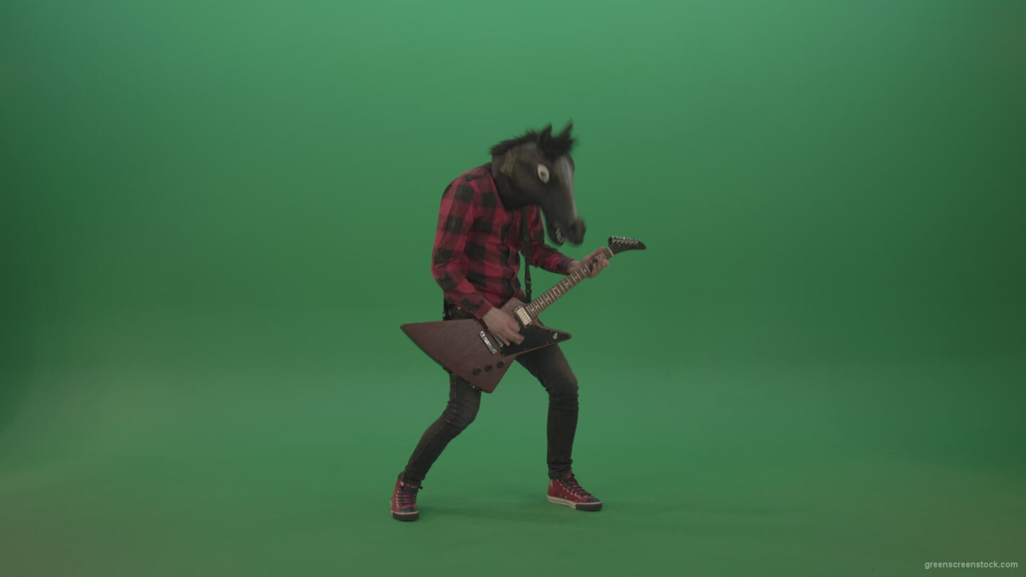 vj video background Fun-green-screen-animal-horse-man-with-guitar-on-green-screen_003