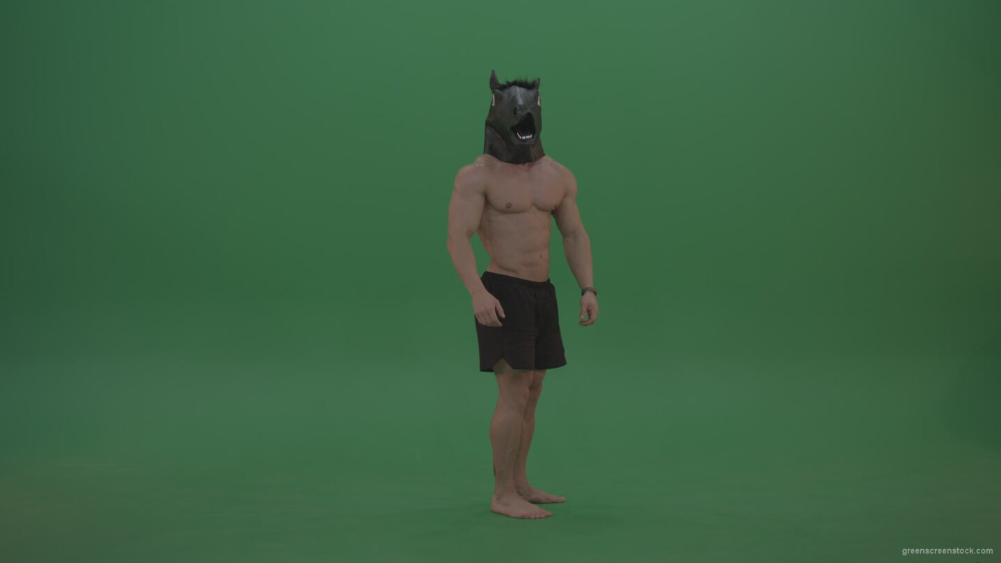 vj video background Ripped-man-with-horse-head-displays-body-over-chromakey-background_003