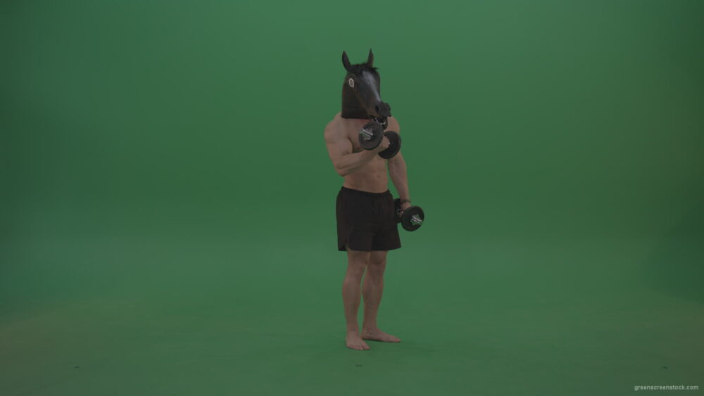vj video background Ripped-man-with-horse-head-lifts-dumbells-over-chromakey-background_003
