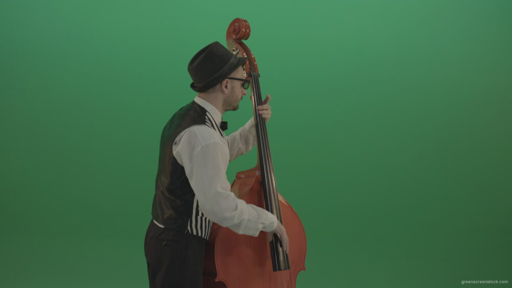 vj video background Young-Man-play-jazz-on-double-bass-String-music-instrument-isolated-on-green-screen-in-back-side-view_003